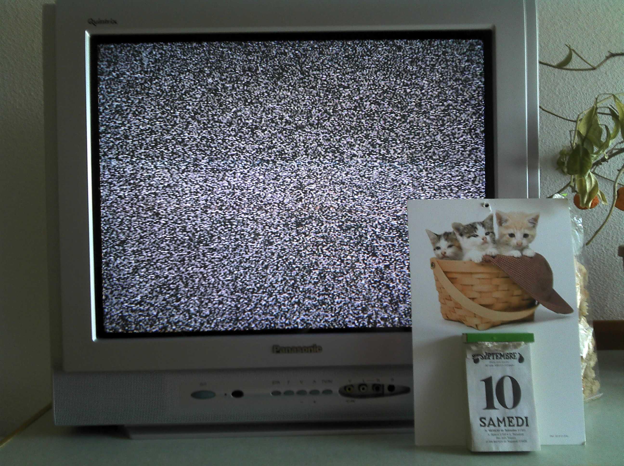 Une tutelle en France : 6 mois sans télé